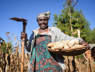 Three Solutions for Delivering Insurance to Smallholder Farmers