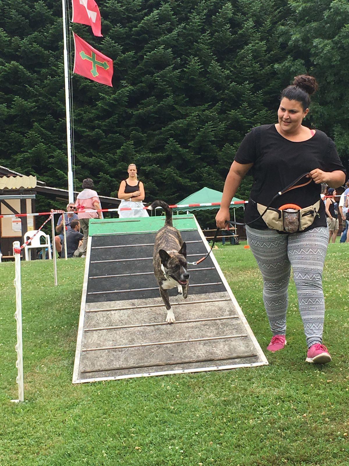 Dog Fun Rallye
