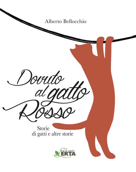 Dovuto al gatto rosso di Alberto Bellocchio