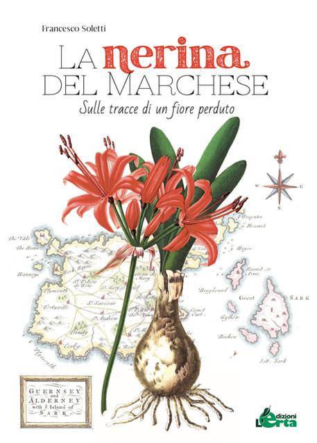 La nerina del marchese di Francesco Soletti