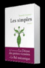 Grannec_les_Simples_3D-min.png