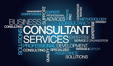 Consultant graphic 2.jpg