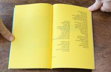 Japanese Binding Book16