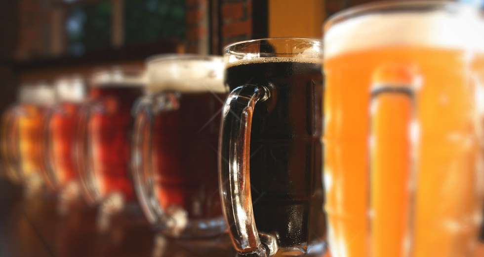 Beer Training