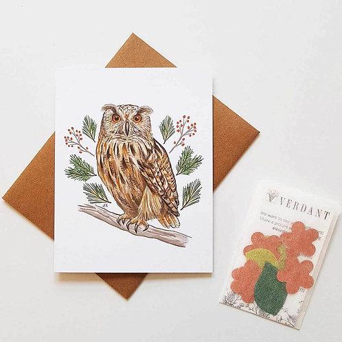 Winter Owl Eco-Friendly Greeting Card