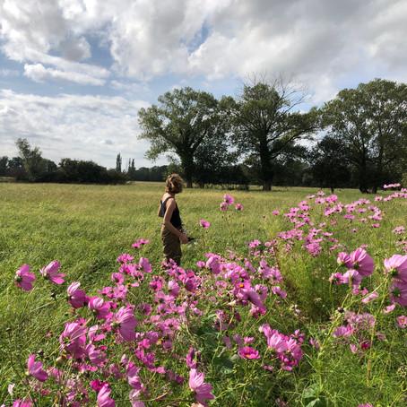 Marie,  Fleurs d'Arles