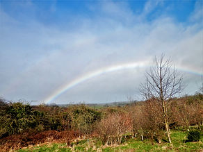 Rainbow over Bilton Fields.jpg