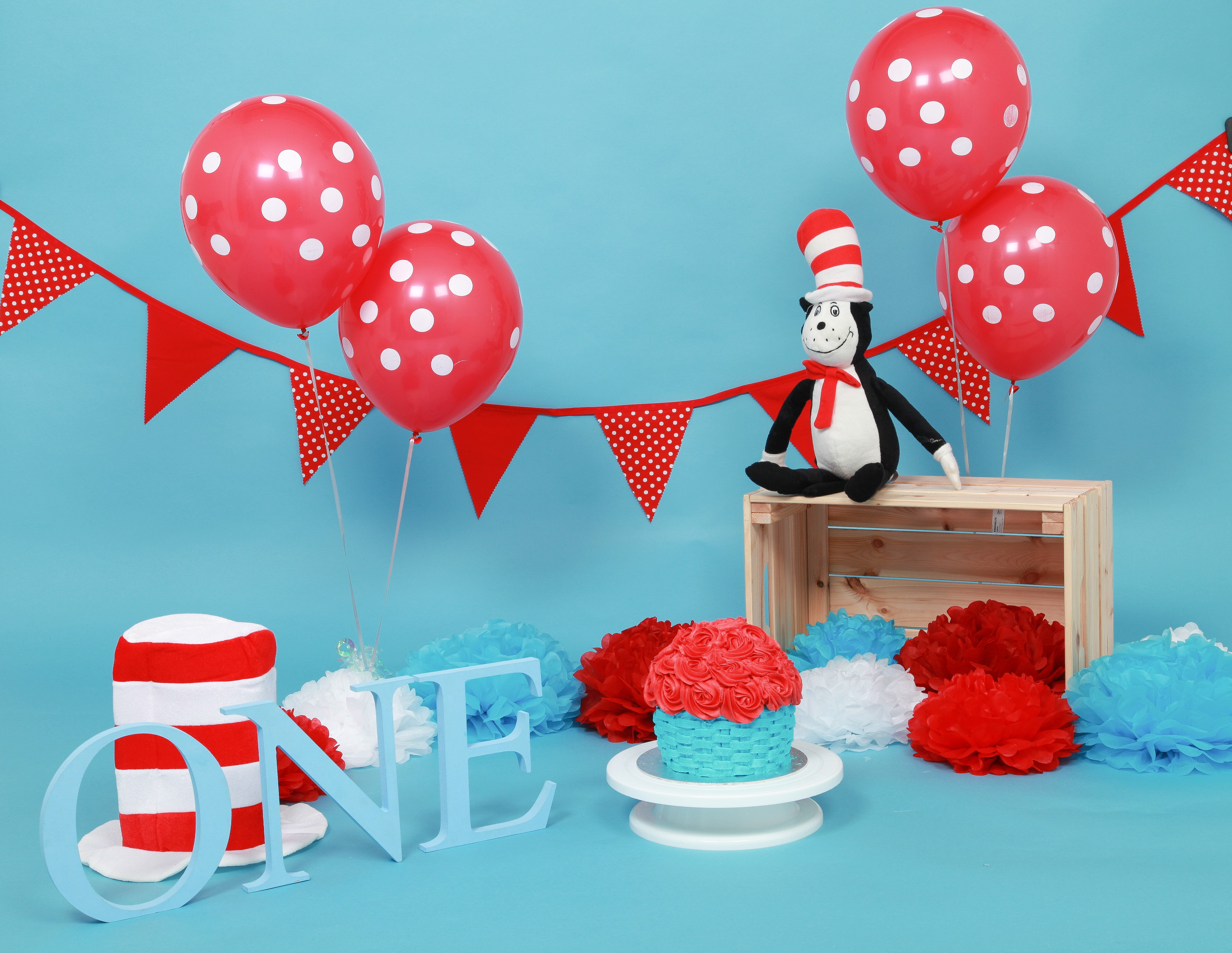 Cat in the Hat Dr Seuss Cake Smash