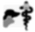 logo .png.png