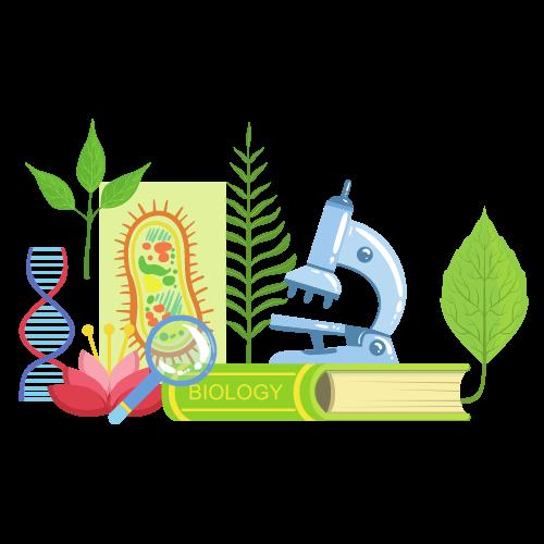 High School - Summer Biology Program