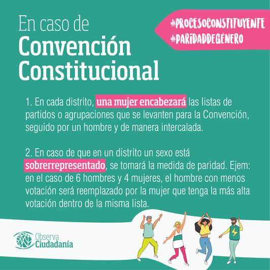 Ley de Paridad de Género en el Proceso Constituyente, en caso de Convención Constitucional