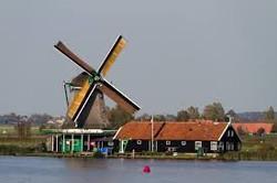 Windmill de zoeker