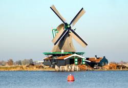 Windmill het jonge schaap