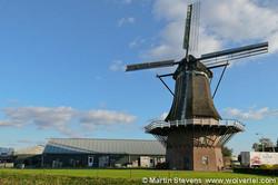 Windmill de ooievaar