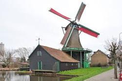 Windmill de Pink
