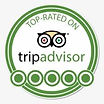 tripadvisor review.jpeg