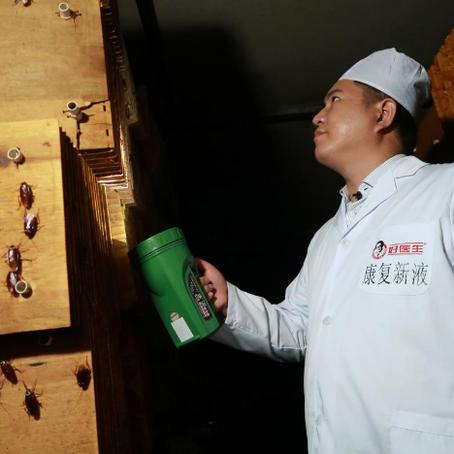 A CHINA ENCONTROU UMA MANEIRA BRILHANTE DE COMBATER O DESPERDÍCIO DE ALIMENTOS:BARATAS!