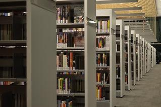 Biblioteka-stelazhi-knigi-Library-racks-