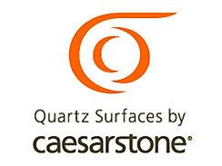 Caesarstone+Logo-1.jpg