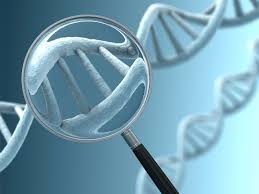 Genetic Test Results Consult