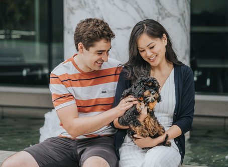Vancouver couple chooses puppy over kids — and they're not alone.