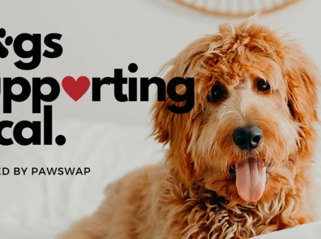 Vancouver-based company provides dog owners with a guide to support local