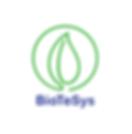 wix_biotesys.PNG