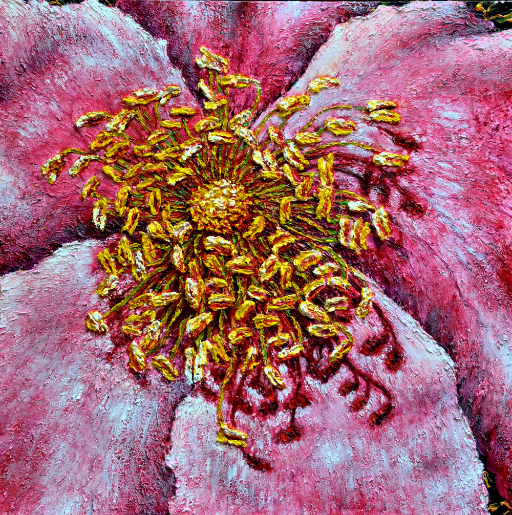 Pink Rose Inside $600, 20 x 20 in. Oil on Canvas