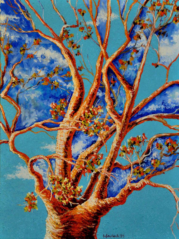 Joy Tree $700, 18 x 24 Oil on Canvas
