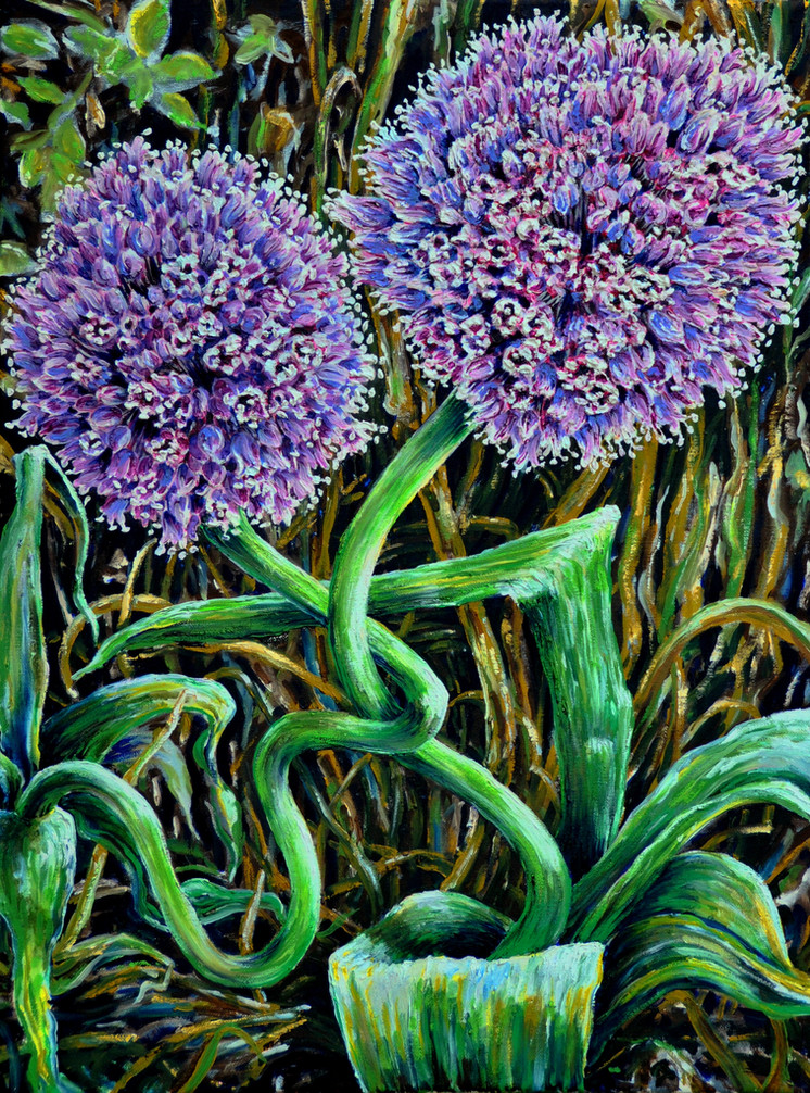 Blooming Garden Leeks $700, 18 x 24 Oil on Canvas