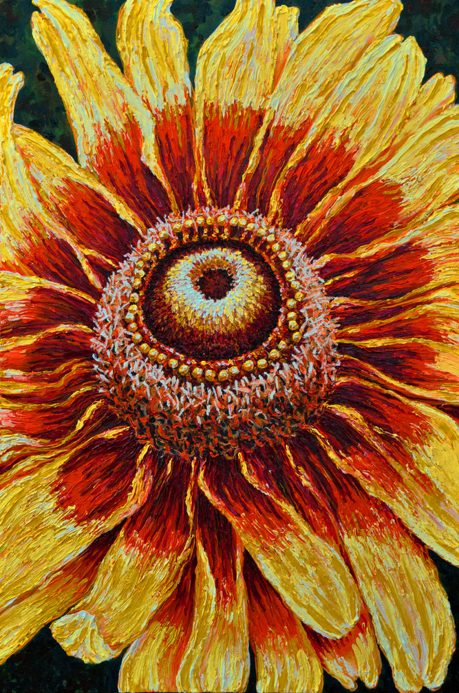 Large Sun Flower $1,250 Oil on Canvas 24 x 36 in.