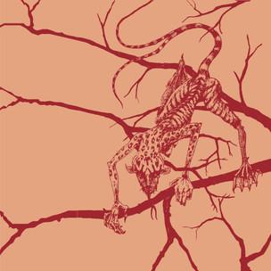 Vectorized Drawings-03.jpg