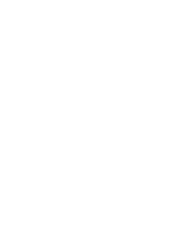 LogoPetitPache_edited.png