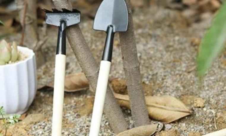 Miniature Tool Set
