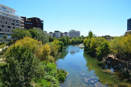 Montpellier 7.jpg