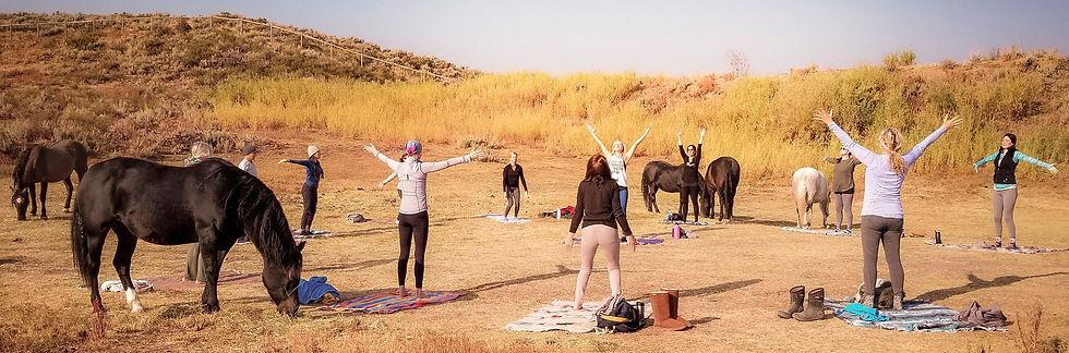 Yoga with herd.jpeg