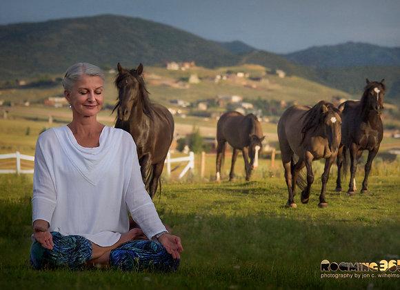 Horse Journey Yoga Video