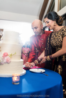 Dee and Girish's Wedding Highlight 32