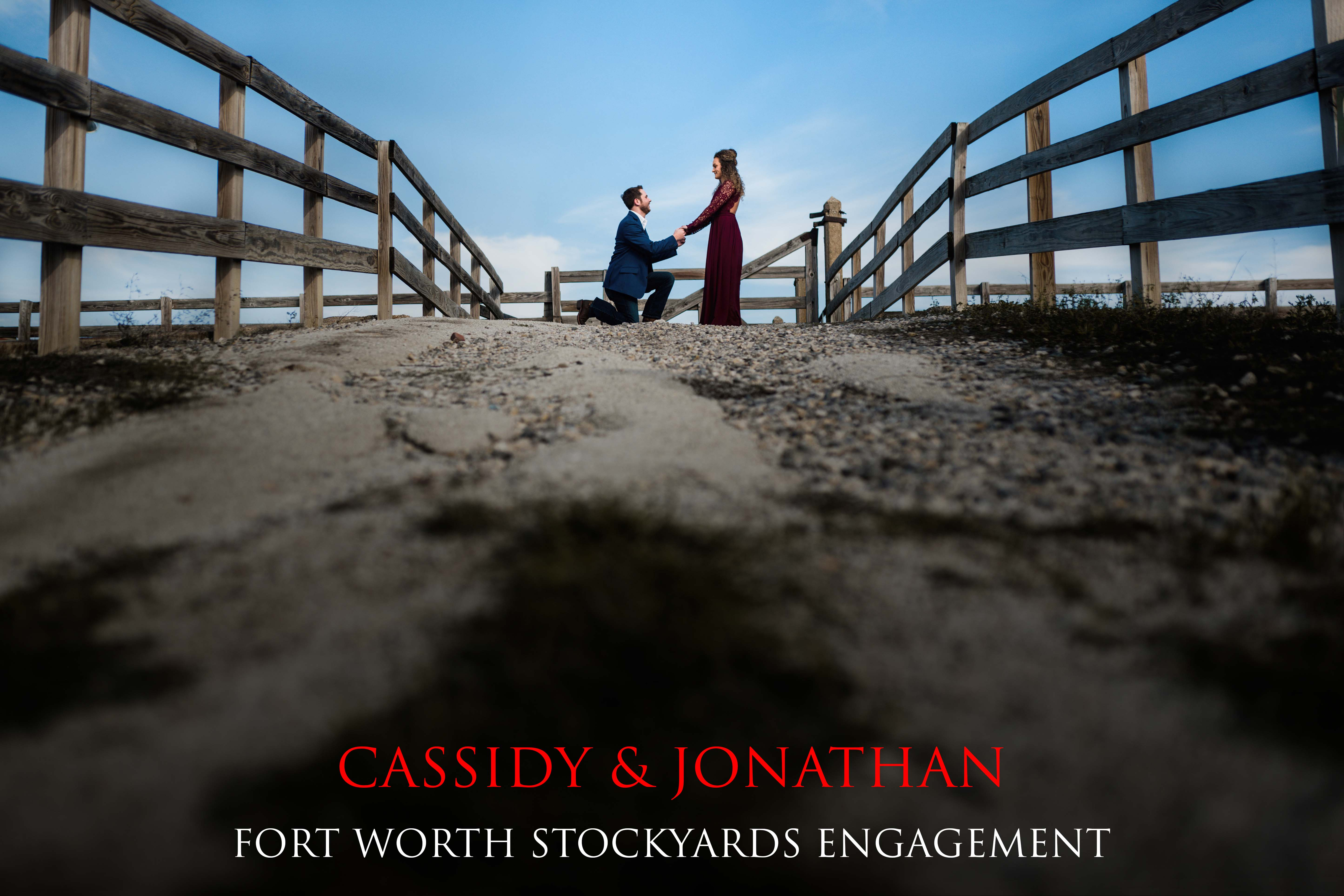 Fort Worth Stockyards Engagement