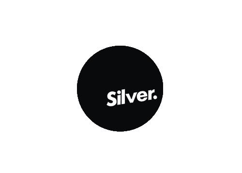 Silver Best Award 2017
