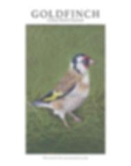Goldfinch Tutorial