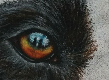 3 things I learned from colour pencils: