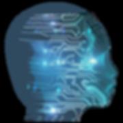 cranio digitale.png