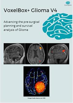 Glioma White Paper.png