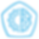 icon-blue-EMS.png