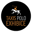 Taxis-Polo-Exhibice.png