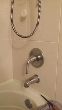Dripping & Running Danze Bathtub Faucet