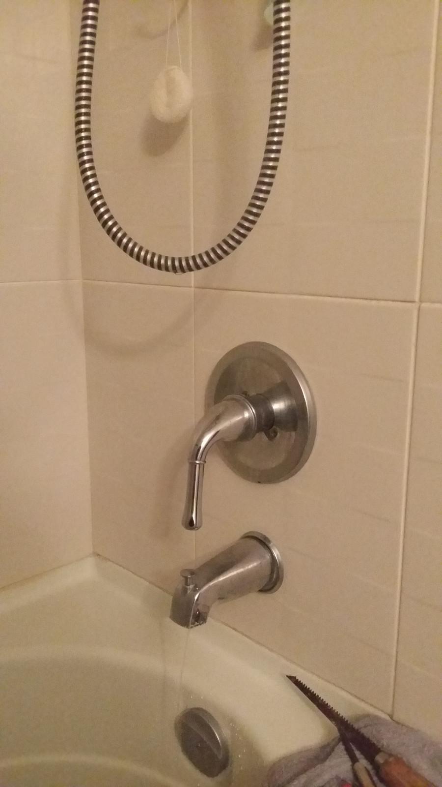 Dripping Running Danze Bathtub Faucet