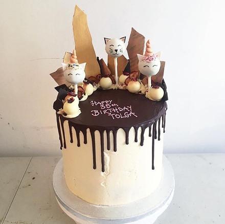 Cake pop and chocolate shard cake .jpg