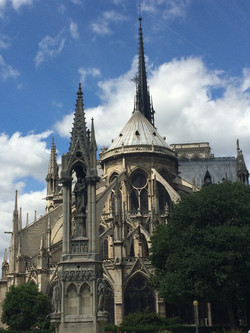 Notre Dame Cathedral, 2016